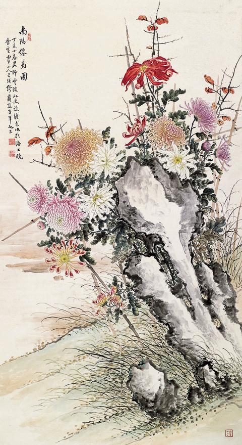 南阳仙菊图