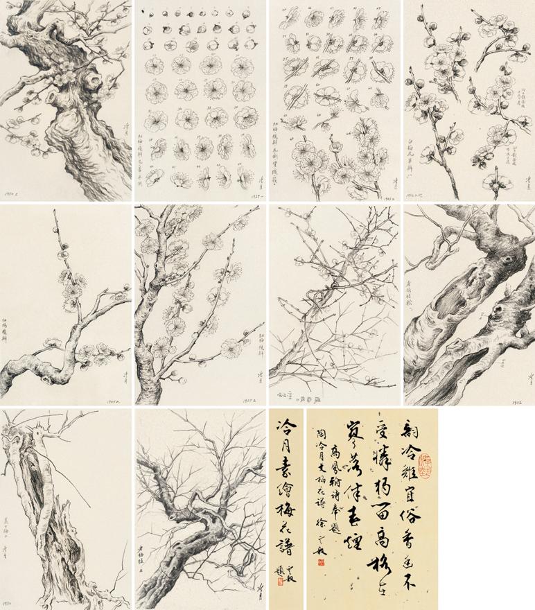 冷月素绘梅花谱(六十开)