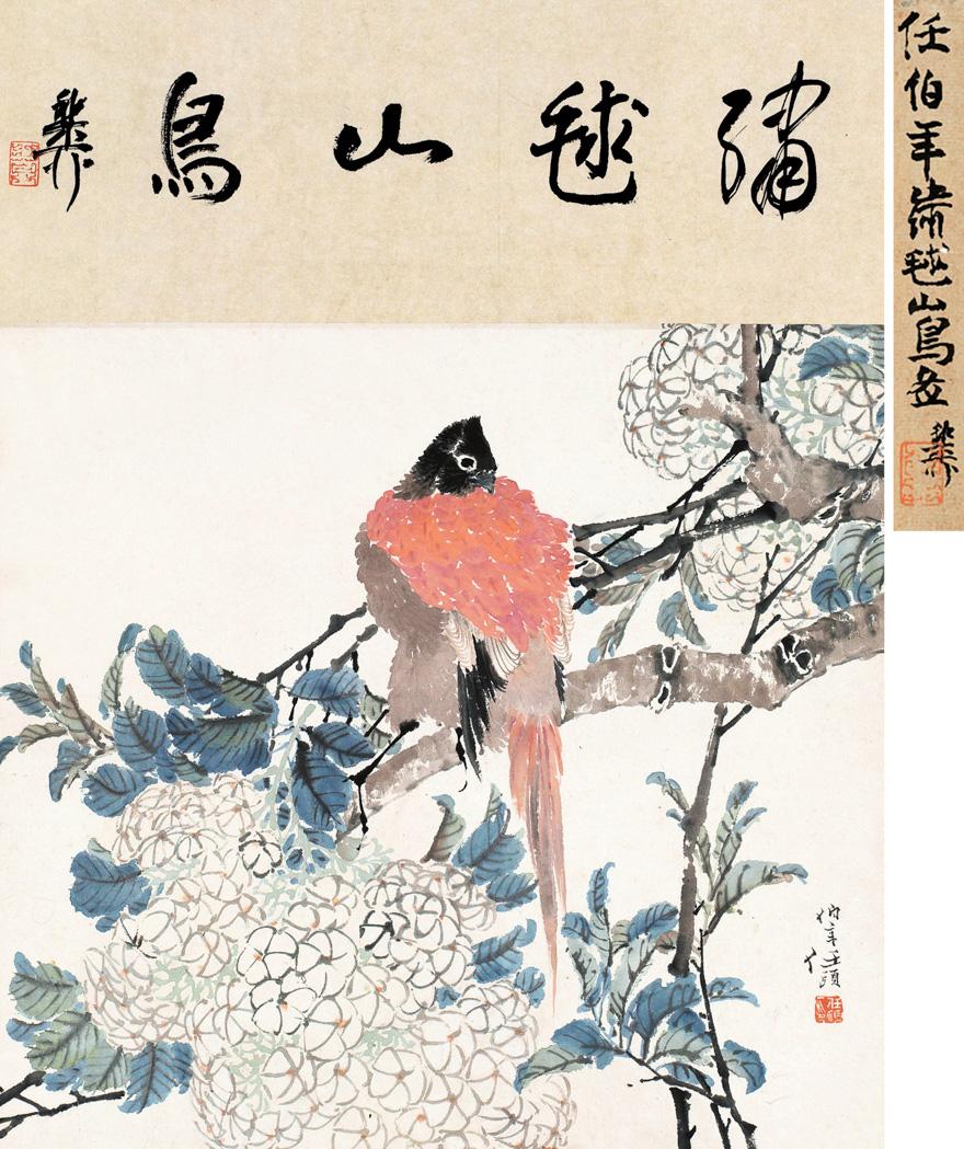 嘨毬山鸟图