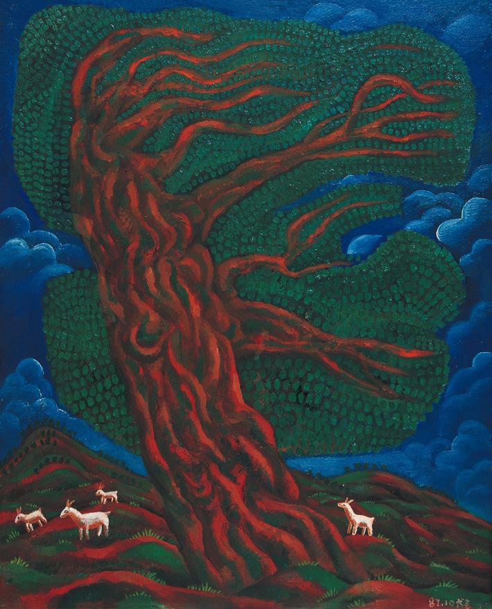 有白山羊的大桉树