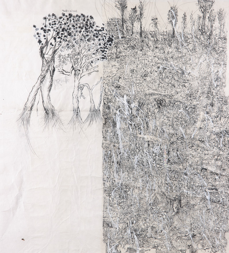 风景 2005 No.1