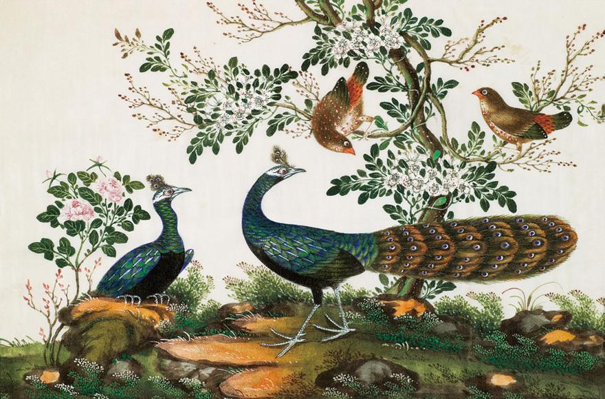 珍禽图 (两幅)