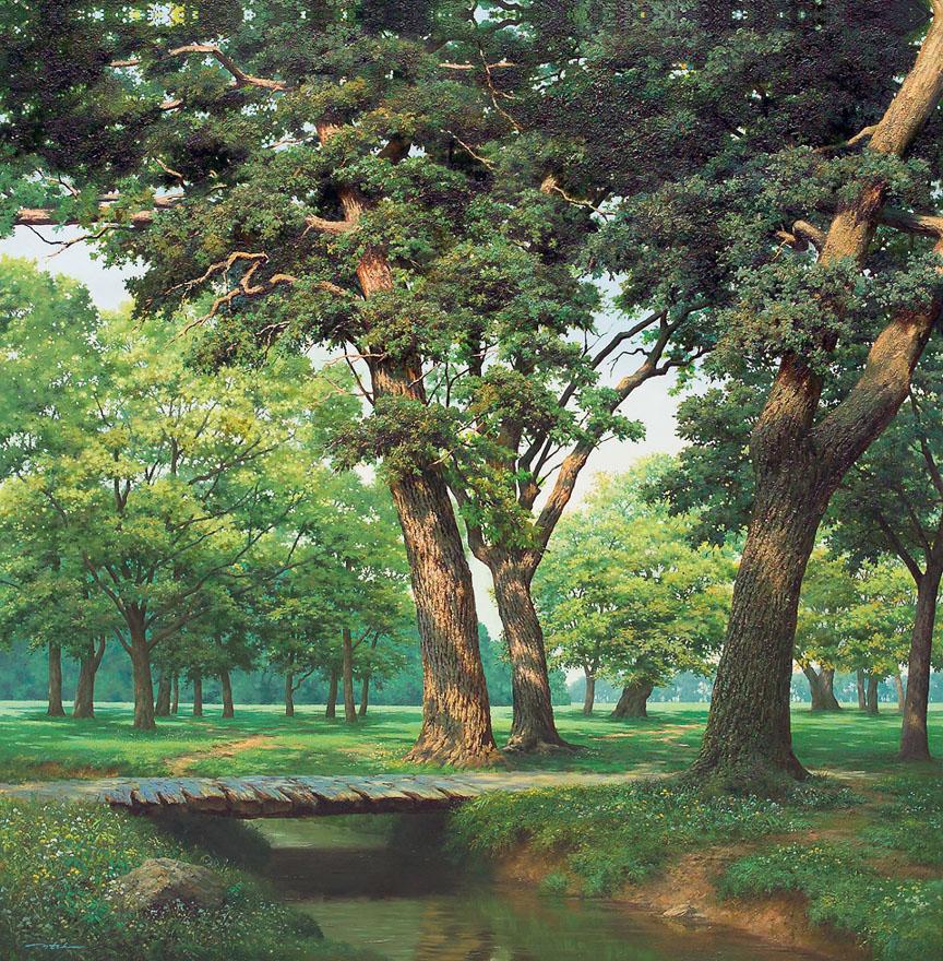 寂静的树林