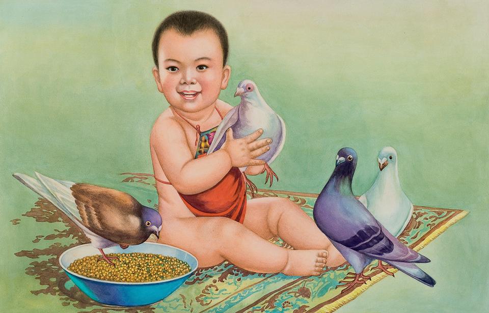 孩子爱鸽子