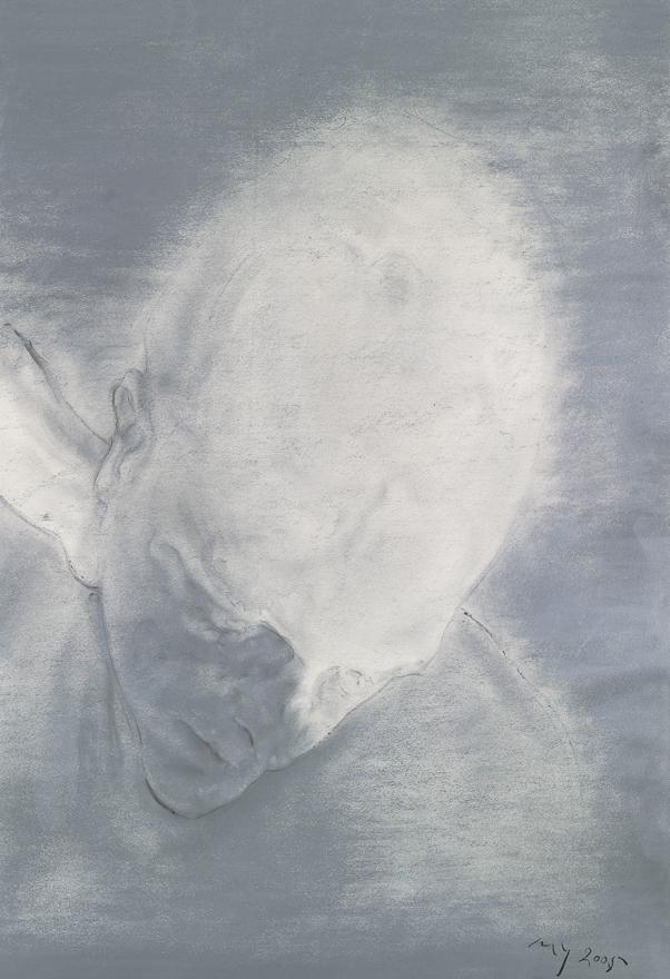 托马斯的肖像 No.5