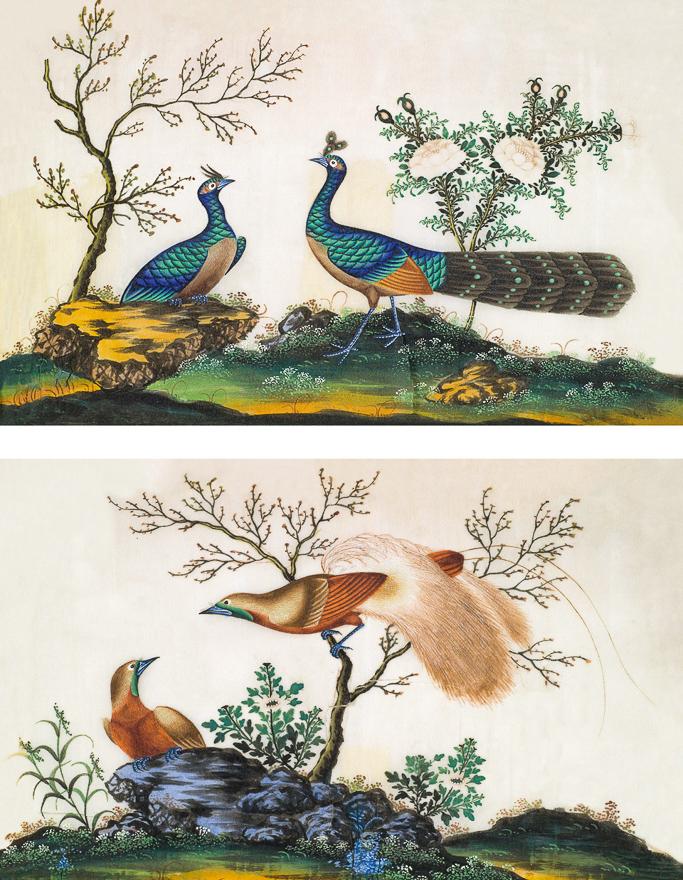 花鸟(两幅)