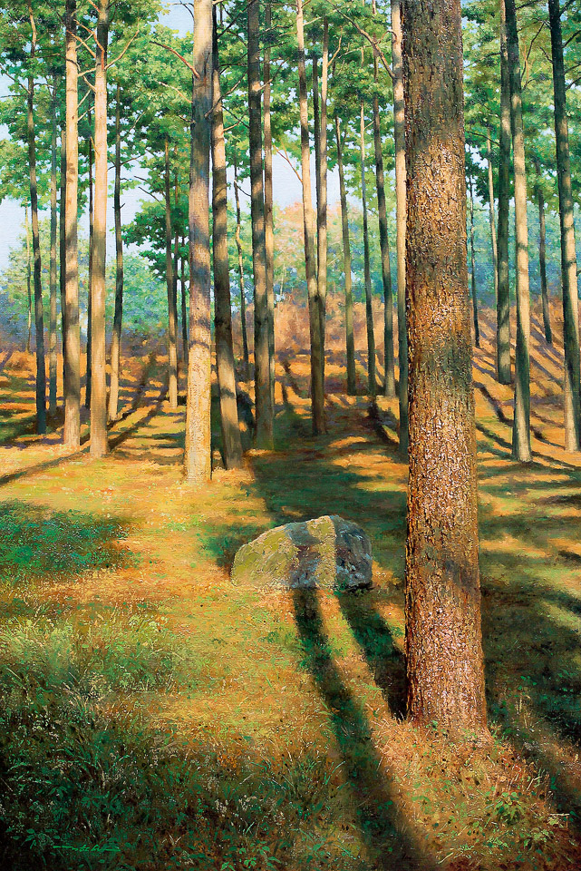 寂静的森林 No.43