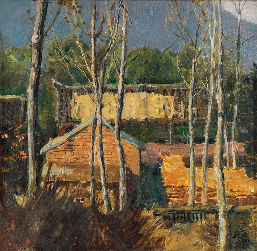农家院/杉树林
