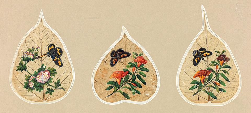 花鸟(六幅)