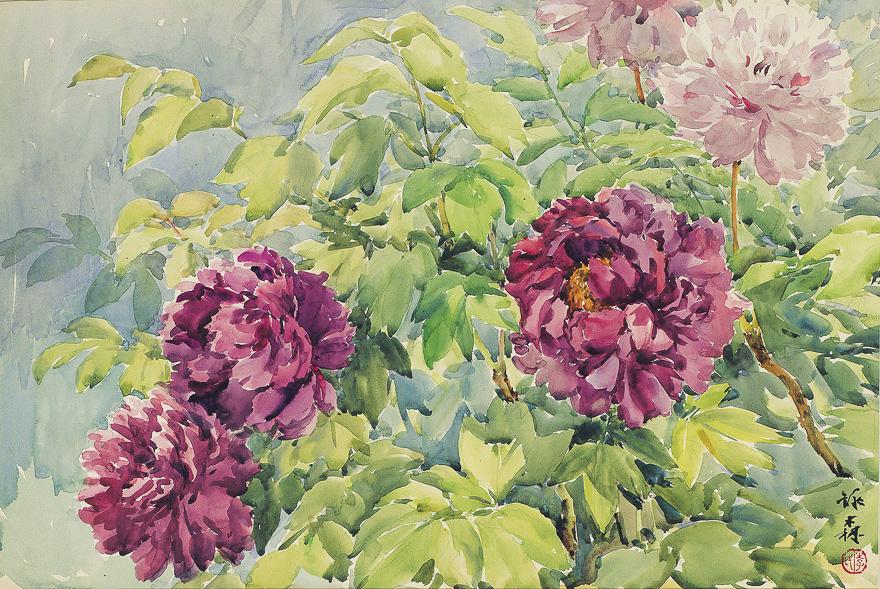 紫红色牡丹 /  瓶花静物 (一组两幅)