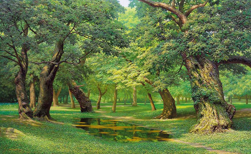 寂静的森林No.76