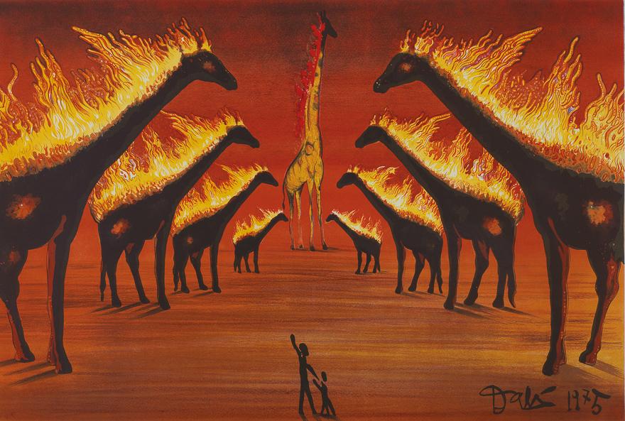 阿维尼翁的长颈鹿(244/300)