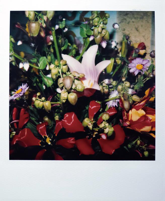 《Flower》(一组4张)
